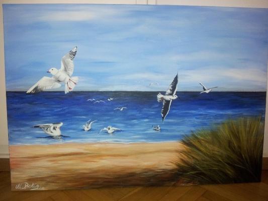 Moewen-Ostsse-martitim-strandbild-voegel-Meer-39872_12
